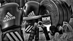 Training, playing... (Yohan92) Tags: training playing box boxing motivation gloves adidas black bg bulgaria cs