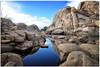 Hard Rock (fotografdude) Tags: hiddenvalley joshuatree nationalpark reflections phallus hard fotografdude nikond610