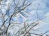 Winterlicher Feldberg im Taunus (Bea tedo) Tags: feldberg taunus winter schnee sonne schneelandschaft winterlandschaft winterimpressionen