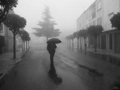 Niebla (vitometodio) Tags: piornal valledeljerte extremadura caceres niebla fog callejeando streetphoto streetphotography bnw bnwlife bnwworld streetbw streetshots street fotodecalle topbnw bnwuniverse streetphotobw calle blancoynegro streetart blackandwhite bnwphoto lluvia rain blackandwhitephotography vitometodio olympusomdem5markii olympusmzuikodigitaled1240mmf28