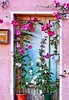 Happy morning 🌸🌺🌸 (basem_teacher) Tags: lightroom iphone7plus iphoneshot scenery scene view door home house oldhouse roses flowers moments beautiful morning happy