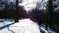 P1070976 Nature temps de neige 74 (personne) -Corra (jeanchristophelenglet) Tags: saintgermainenlayefranceétangducorraforêtdesaintgermainenlaye arbreforêt foresttree florestaarvore neige snow neve