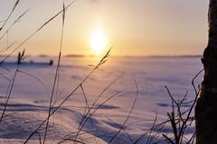 Sunset (Marko Pennanen) Tags: auringonlasku pyhäselkä rääkkylä sunset talvi vuoniemi winter
