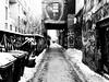 Graffiti Alley (MassiveKontent) Tags: streetphotography bwphotography streetshot toronto noiretblanc blackwhite bw city monochrome urban blackandwhite streetphoto noir graffitialley graffiti streetart wallart mural fashiondistrict contrast