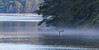 Trying For A Catch (John Kocijanski) Tags: eagle baldeagle animal bird birdofprey fishing water fog reservoir mongaupfallsreservoir raptor canon70300mmllens canon7d wildlife nature