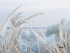 IJs Almeerderstrand, Ice Almeerderstrand (Picsall Photography) Tags: natuur nature natuurfotografie naturephotography wwwpicsallnl picsall picsallphotography wanddecoratie walldecoration tekoop forsale natuurfotograaf naturephotographer ice ijs winter winter2018 markermeer almerestrand almere