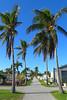 Key West (Florida) Trip 2017 7458Ri 4x6 (edgarandron - Busy!) Tags: florida keys floridakeys keywest cemetery cemeteries keywestcemetery