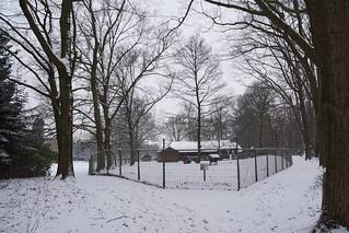 Sneeuwpret in Park Kienehoef Sint-Oedenrode