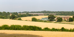 Ouse Valley Viaduct at Balcombe (Joe Dunckley) Tags: balcombe balcombeviaduct brightonmainline britain british england english greatbritain midsussex ousevalley ousevalleyviaduct southernrailway southerntrains sussex uk unitedkingdom westsussex agriculture arable bridge cereal crop farm farming farmland field landscape nature railway summer sunny transport transportation viaduct wheat