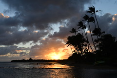 Hawaiian Sunset (trailwalker52) Tags: hawaii oahu sunset hawaiiansunset hawaiisunset hawaiikai beautiful palmtree palmtrees palm