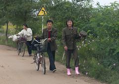 North Korean couple walking alongside the road with a bicycle in the countryside, North Hamgyong Province, Jung Pyong Ri, North Korea (Eric Lafforgue) Tags: 1819years 2024years adults adultsonly asia asianethnicity bicycle chilboarea communism countryroad countryside couple dictatorship dirttrack dprk fulllength horizontal humanbeing innerchilbo men nature nk112103 northkorea northkorean people pushing road standing threepeople traveldestinations walking women youngman youngwoman jungpyongri northhamgyongprovince 北朝鮮 북한 朝鮮民主主義人民共和国 조선 coreadelnorte coréedunord coréiadonorte coreiadonorte 조선민주주의인민공화국 เกาหลีเหนือ קוריאההצפונית koreapółnocna koreautara kuzeykore nordkorea північнакорея севернакореја севернакорея severníkorea βόρειακορέα