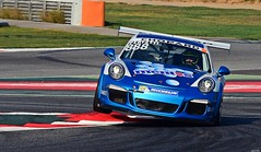 Porsche 911 GT3 Cup / Egidio PERFETTI / Mentos Racing (Renzopaso) Tags: porsche 911 gt3 cup egidio perfetti mentos racing carrera france 2017 circuit barcelona porsche911gt3cup egidioperfetti mentosracing race motor motorsport photo picture porschecarrera circuitdebarcelona porschecarreracup porschecarreracupfrance2017 porschecarreracupfrance cars السيارات 車 autos coches автомоб