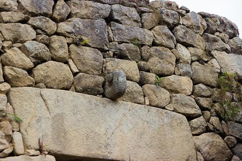 Machu Picchu 30
