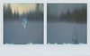 Unseen (Maija Karisma) Tags: polaroid instant pola littlebitbetterscan sx70 impossible diptych color600 nature winter