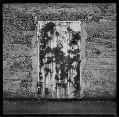 _[]_ (*altglas*) Tags: mediumformat mittelformat 6x6 120 film analog expired expiredfilm orwonp27 bw monochrome zeiss superikonta door rust decay verfall