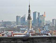 Old Tallinn view from Toompea (JohntheFinn) Tags: tallinn tallinna estonia viro eesti snow lumi ice jää winter talvi tallinnoldtown vanalinn oldtown kohtuotsavaateplatvorm toompea toompeahill maisema kabloppo