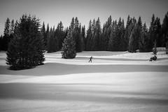 Skier and long shadows (Helena Normark) Tags: skier longshadows winter snow rønningen leinstrandmarka trondheim sørtrøndelag norway norge sonyalpha7ii a7ii 35mm lensbaby burnside35 lensbabyburnside35 lensbabylove seeinanewway