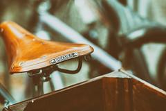 BROOKS and Wood (*Capture the Moment*) Tags: 2017 brooks bern berne bicycle bicyclesaddle bicycleseat fahrrad fotowalk mog mogprimoplan1975neo meyeroptikgörlitzprimoplan1975neo schweiz sonya6300 sonyilce6300 switzerland vintage sattel