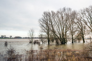 River outside its banks