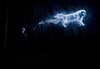 Patronus (Willers1404) Tags: ally patronus woods harry potter abstract mysterious portrait dog ace photoshop wizard spell dark blue