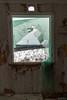 Room with a view 2 (kentkirjonen) Tags: window fönster abandoned övergivet övergiven old gammal sweden sverige dalarna ue decay förfall wood trä canon 450d winter vinter snow snö skog forest cold kallt hus house broken plastic plast byggplast sönder