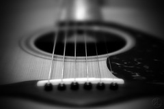 String Tilt Shift (RickLev) Tags: 5d ben canon carole cochrane family furniture guitar home levesque markii music rick yamaha beautiful happiness love