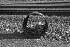 Abandoned Barrel (Scott Micciche) Tags: p30 paranol s filmdev:recipe=11948 ferraniap30alpha80 film:brand=ferrania film:name=ferraniap30alpha80 film:iso=80
