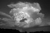 Isolated Storm near the Oklahoma-Arkansas Border (mesocyclone70) Tags: thunderstorm storm severeweather severe severestorm isolatedstorm hail hailshaft anvil cauliflower oklahoma arkansas stormchase stormchaser stormchasing stormscape stormstructure blackandwhite bw lightning thunder updraft sky skyscape cloud clouds cloudscape stormcloud tower cumulonimbus landscape fortsmith monochrome