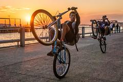 Web bike tricks 7 (mtschappat@verizon.net) Tags: bikes tricks sunset statue liberty brooklyn bridge park sony a6500 18105 lens photoshop on1