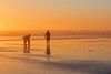 golden moment (janicelemon793) Tags: sunset oregon ocean beach gearhart coastal summertime family fun sea sand sky water people waves serene calm relaxation mellow vacation restful peaceful