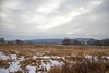 7K8A6034 (rpealit) Tags: scenery wildlife nature winding waters trail wallkill river national refuge
