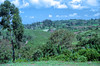 Ethiopia : Kibish, landscape #2 (foto_morgana) Tags: africa afrika afrique analogphotography analogefotografie ethiopia ethnic ethnie etnia etniciteit kibish landscape mountainous nikoncoolscan omovallei omovalley outdoor panoramic photographieanalogue scenic siurma suri topazstudio travelexperience trees tribal tribe vallebajodelomo valléedelomo vuescan