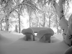 27 janvier 2018 (sabine-43) Tags: neige