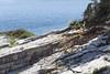 rocky beach (cyberjani) Tags: adriatic sea istria beach rock fossil