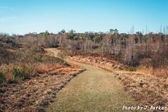 Holloway Park (J. Parker Natural Florida Photographer) Tags: centralflorida florida hollowaypark lakeland polkcounty hike preserve trail walk path swamp wetland outdoor landscape scenic bluesky sunny sunshine grass vsco vscofilm