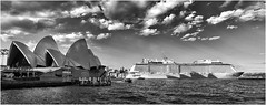 Ovation of the seas, Sydney (beninfreo) Tags: sydney sydneyoperahouse sydneyharbour cruiseship liner ovation ovationoftheseas cruise shadow mono monochrome contrast blackandwhite bw sony sonyrx100 rx100 rx100m3 australia iconic 2017 december caribbean