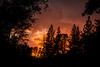 D20555E7 - Fiery Mountain Sunset Before the Storm (Bob f1.4) Tags: fiery sunset fire sky trees silhouette before storm murphys ca california sierra foothills mountains stormy