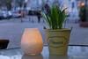 Candle Light Evening (Sockenhummel) Tags: cafewolkenstein dekoration blumen kerze candle flowers bundesplatz cafe konditorei strase berlin fuji x30 traubenhyazinthen