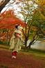 Maiko_20171120_16_6 (Maiko & Geiko) Tags: myokakuji temple fukuno kyoto maiko 20171120 舞妓 妙覚寺 ふく乃 京都 宮川町 河よ志 miyagawacho kawayoshi junkikai