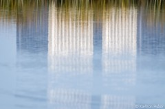 SJWR - Urban Nature_6764 (www.karltonhuberphotography.com) Tags: 2018 abstract calm details juxtaposition karltonhuber lake marsh morninglight nature officetowers outdoors peaceful pond reeds reflections sanjoaquinwildliferefuge southerncalifornia urban water wetlands
