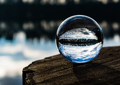 11/365 - A different view (EYeardley) Tags: 3652018 365 day11 11thjanuary2018 glassball crystalball differentview colemere shropshire lake mere trees nature natureshot naturephotography landscapephotography landscape bokeh shallowdof dof depthoffield nikon nikond3300 reflection upsidedown