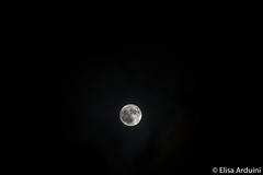 Moon (ElisaArduini) Tags: moon night woods nature natura outdoor palombara palombarasabina italia italy luna notte photography fotografia flickr photo photos foto nikon d3200 nikond3200