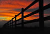 Dawn colours (images@twiston) Tags: dawncolours earlylight light early fencedin fence wood post lane regular pattern morning shepherdswarning red orange yellow pink sky cloud fire wheatheadlane blacko roughlee path grass farm farmland moorland moor lancashire landscape october dawn daybreak track silhouette silhouettes silhouetted posts dof depthoffield rural countryside sunrise valley autumn hff imagestwiston forestofbowland aonb friday happy low lowpov