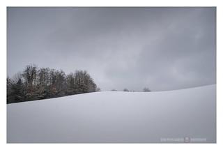 Elegia per un giorno di neve