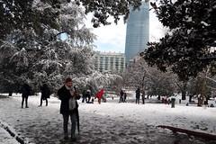 BilbaoNevado2018_0148 (otxolua (Josu Garro)) Tags: bilbao nevada nieve 2018 febrero nevado