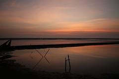 stick dawn (PawL23) Tags: petchaburi thailand bluehour reflection saltfields sunrise dawn asia clouds sky