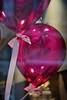 Pink Balloons ... (daniaebi) Tags: luzern manuallens minolta3570 vintagelens pink balloons