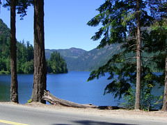 Kennedy Lake, Vancouver Island (Jac Hardyy) Tags: kennedy lake vancouver island bc british columbia park provincial pacific rim hwy highway 4 canada south shore tree trees landscape countryside beautiful fantastic unique mountain mountains view landschaft see kanada ruhe rest panorama himmel sky blau blue road street