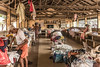 Laundry (LHDPhotos) Tags: cochin india laundry workers