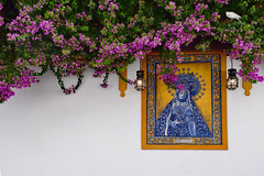 Bougainvillea (Jocelyn777) Tags: bougainvillea foliage walls azulejos ceramictiles bird dove cordoba andalucia spain travel